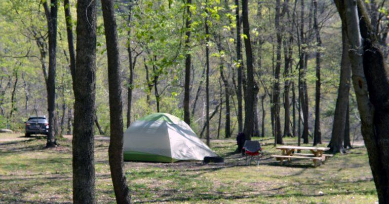 PRIMITIVE TENT SITES (OFF RIVER) & Accommodations | Hot Springs Resort u0026 Spa
